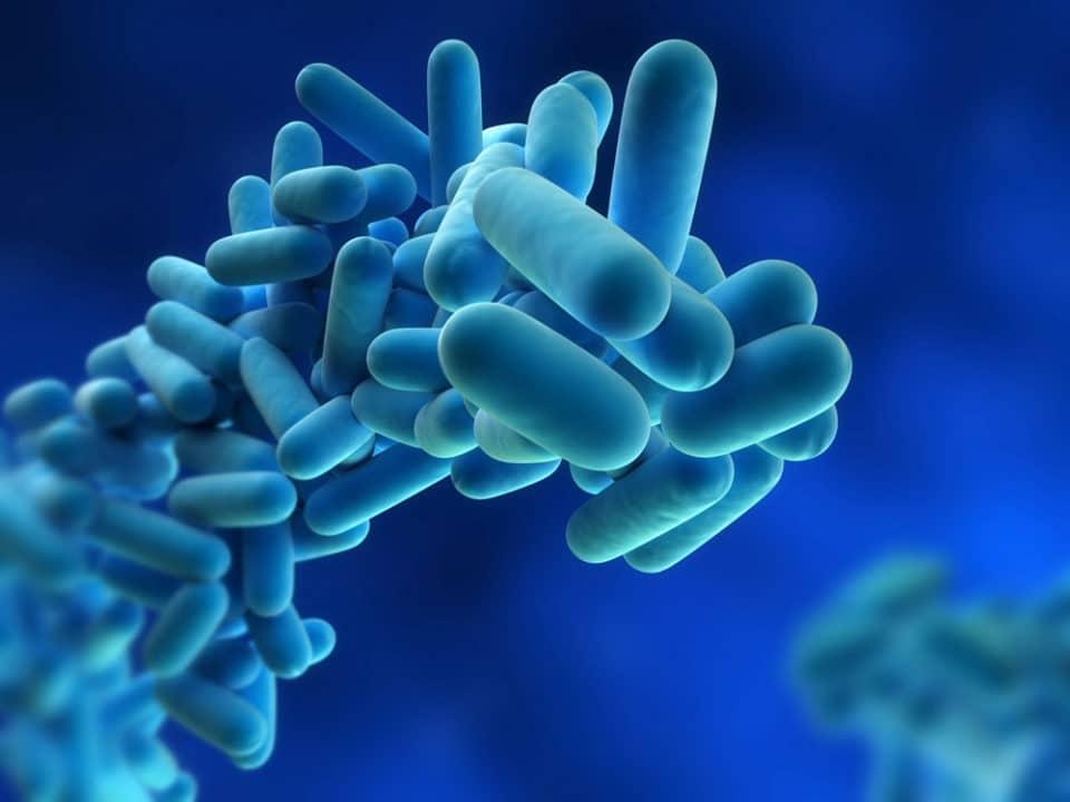 Ecotrattamenti - Blog - Prevenzione - Legionella - Brescia - Copertina
